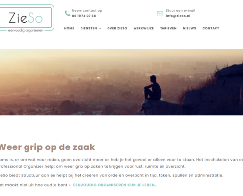 website professional organizer Zieso